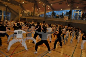 capoeira-meeting-copenhagen-2010-0547