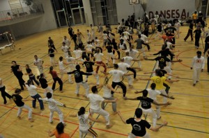 capoeira-meeting-copenhagen-2010-0568