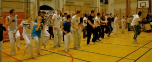capoeira-meeting-copenhagen-2011-4672