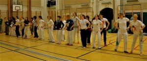 capoeira-meeting-copenhagen-2011-4673