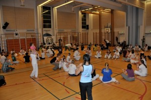 capoeira-meeting-copenhagen-2011-4765