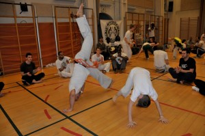 capoeira-meeting-copenhagen-2011-4773