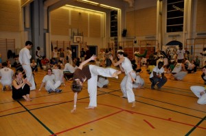 capoeira-meeting-copenhagen-2011-4834