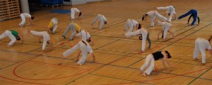 capoeira-meeting-copenhagen-2011-6729