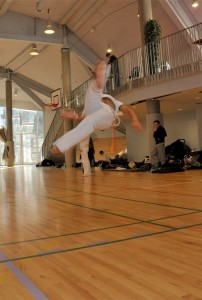 capoeira-meeting-copenhagen-2011-6739